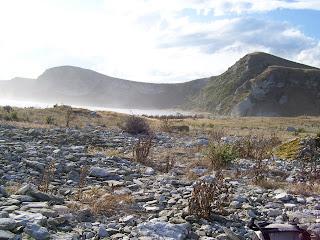 ニュージーランド クライストチャーチ 海外旅行 カイコウラ 写真