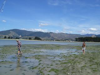 ニュージーランド ネルソン 旅行 フィッシング 写真 画像
