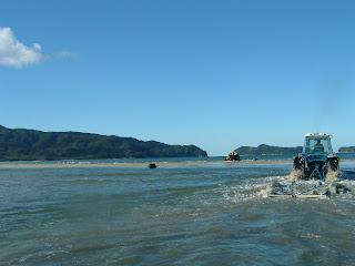 ニュージーランド エイベルタスマン トレッキング 写真 画像 地図 オークランド