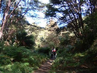 ニュージーランド エイベルタスマン トレッキング 写真 画像 地図