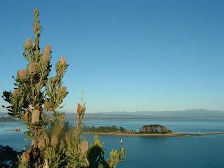ニュージーランド ネルソン 風景 オークランド 写真 地図 旅行 留学 ワーキングホリデイ