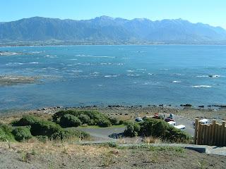 ニュージーランド カイコウラ エイベルタスマン ネルソン オークランド クライストチャーチ 写真 地図