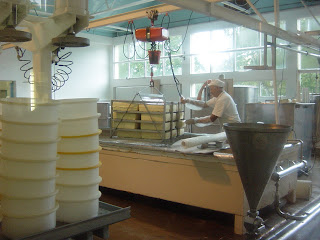 ニュージーランド オークランド クライストチャーチ アカロア チーズ&クッキー工場 写真 画像
