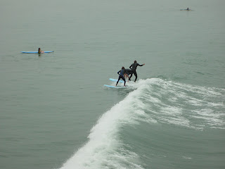 ニュージーランド クライストチャーチ サーフィン オークランド 写真 場所 画像