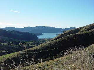 ニュージーランド クライストチャーチ ゴールデンベイ 車 写真 画像 オークランド