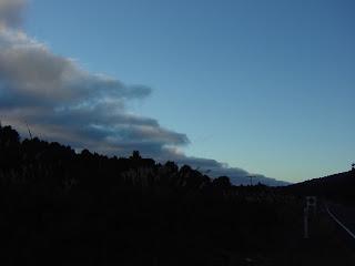 ウェリントン→ワンガヌイ→トンガリロ国立公園 ニュージーランド オークランド 写真 画像 有名な観光地