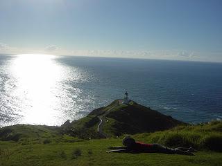 ニュージーランド パイヒア→ケープレインガ 写真 画像 オークランド クライストチャーチ ワーキングホリディ