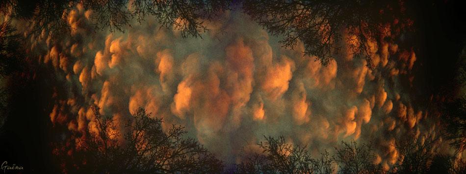 «Lorsque les vents soufflants tiennent les flots, On ne peut les empêcher, toute la terre est A leur merci, toute la mer : ils abîment même les nuages du ciel Et remuent des feux rouges sous leurs coups sauvages.» Ovide, Extrait de Les Métamorphoses - Livre XI...