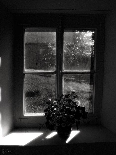 «Jadis, aux champs, seuils et croisées, S'ornaient de bouquets toujours frais, Comme au matin sous les rosées, Les prés, les jardins, les forêts, Tout l'été fenêtres ouvertes, Le logis sentait le terroir, Comme feuilles de menthe verte, Comme neige et miel de blé noir.» Nérée Beauchemin