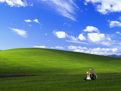 windows xp wallpaper. windows wallpaper xp.