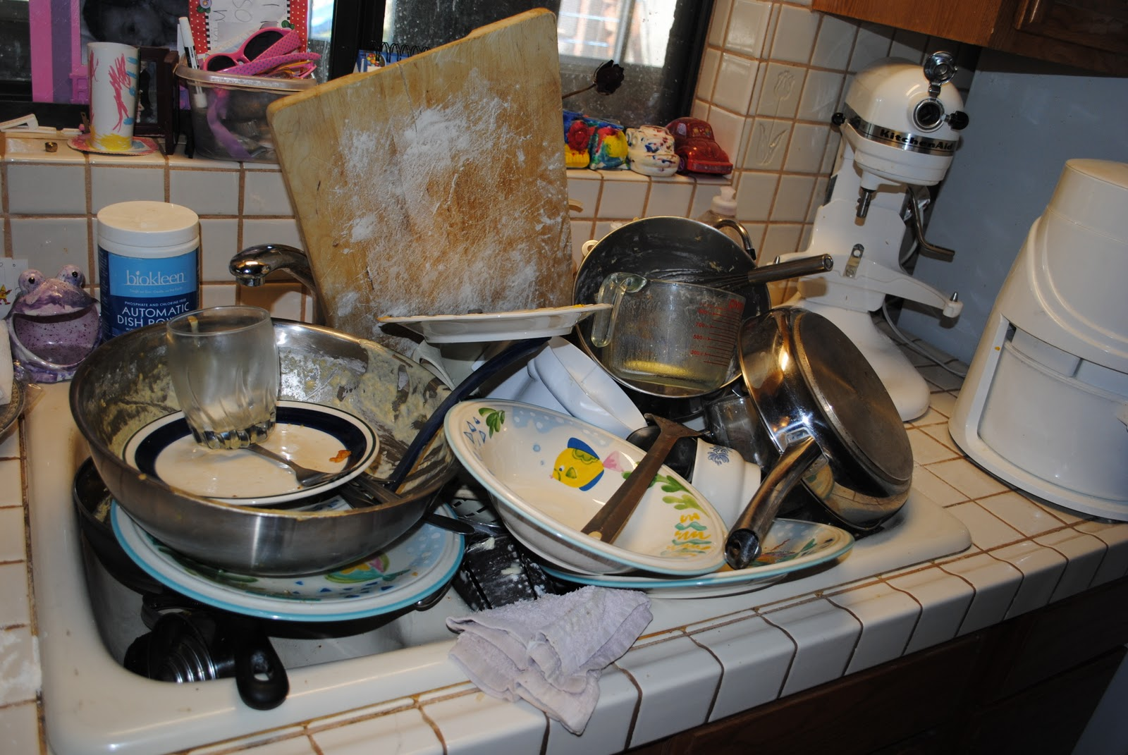 ARE THEY ALL YOURS?!??: Dishwashers Grace