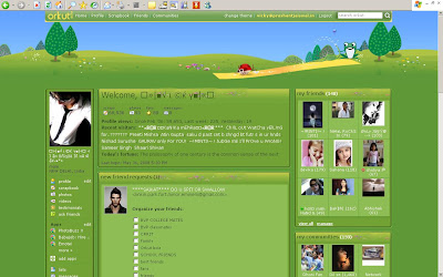 Orkut Themes