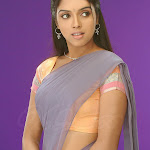 Indian Popula Actress Asin In Traditional Dress