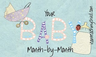 Your Baby Month By Month Month 4 I Can Teach My Child
