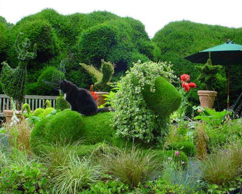 bush03.jpg