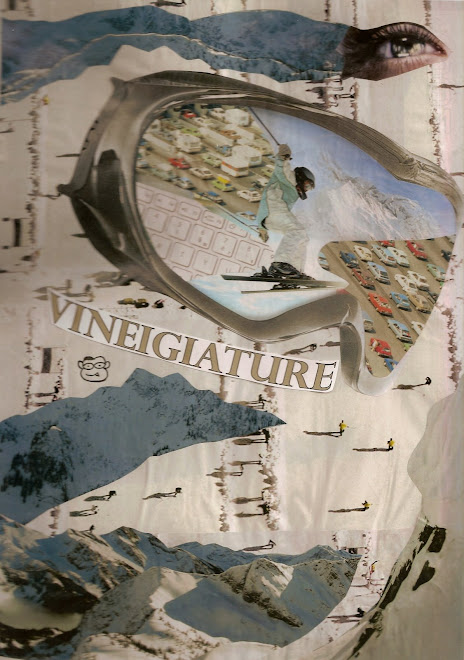 VINEIGIATURE