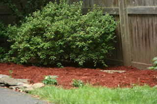 Knit Jones Mulch Pre And Post