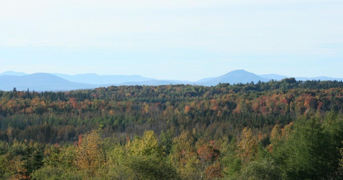 Knit Jones: Vermont Foliage