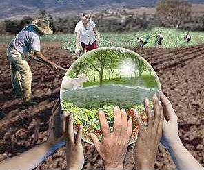 La Educación Ambiental para el Desarrollo Sostenible