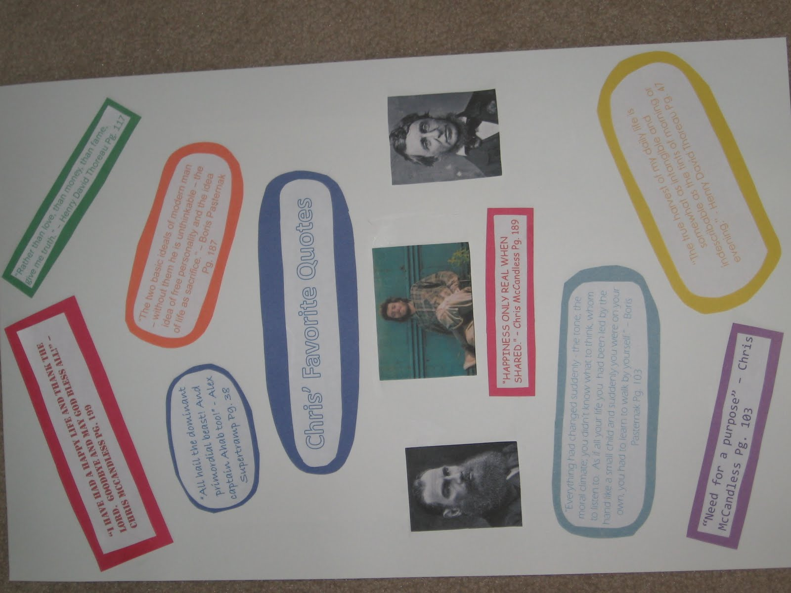 Ashleys Literature Project For Into The Wild Final Assessment