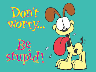 Don't Worry Be Stupid