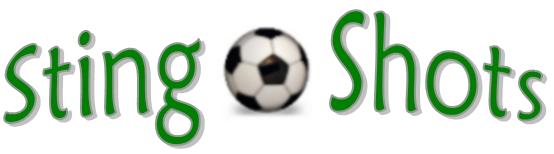 StingShots Banner