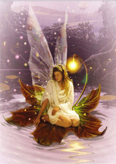fairy float