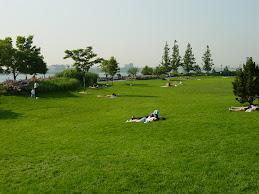 Parque MAGDALENA 2020