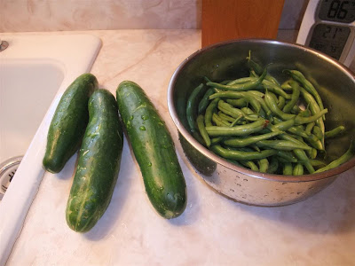 cucumber and beans, from garden, clean