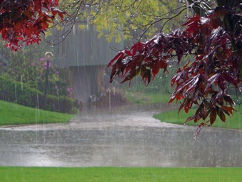 مسیر بارانی