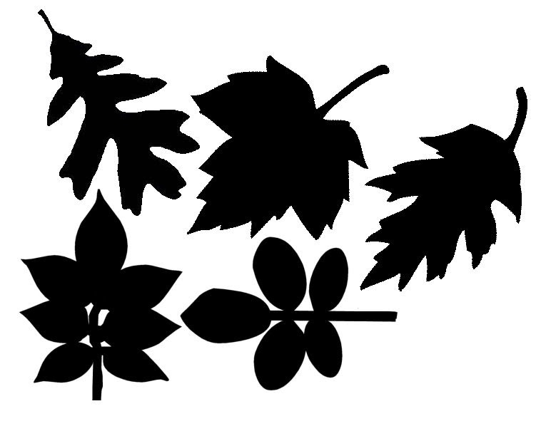 The Free Svg Blog Loads Of Fall Leaves Free Svgs Scal