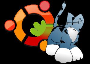 Detalle gráfico de lo que opino: el gato es la mascota de xcb