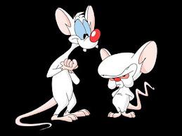Pinki y Cerebro