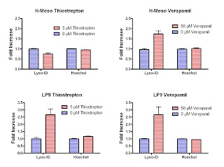 Response change in Lyso-ID® Red dye Fluorescence caused by thiostrepton and verapamil in two mesothelial cell lines