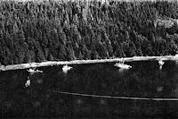 British Columbia Salmon Purse Seiners