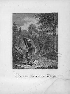 Chasse des écureuils en Finlande Gravure ancienne