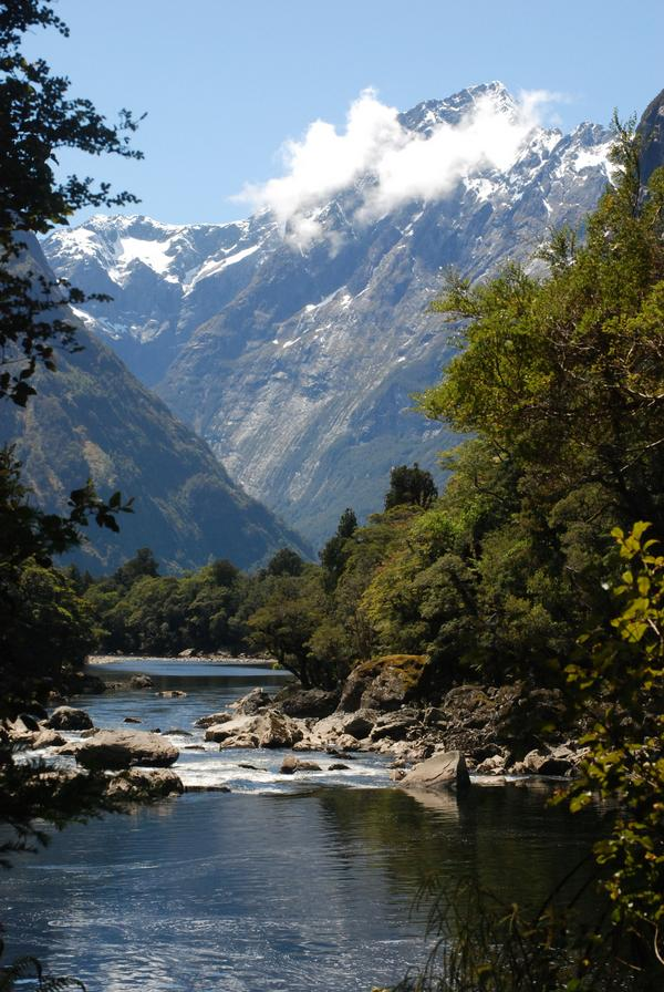 Adventures In Sheep Farming The Milford Track And Beyond
