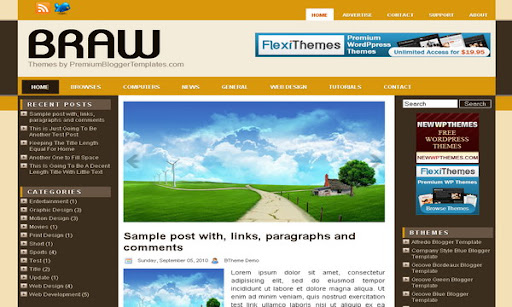 Braw Blogger Template