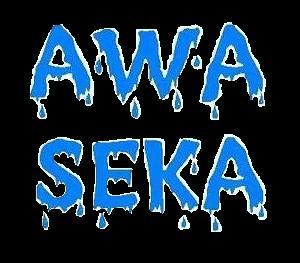 Awa Seka