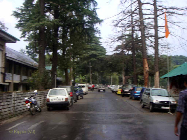 Posted by Ripple (VJ) : Palampur, Himachal Pradesh: Palampur Market view near Govt. PG College