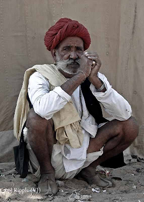 Posted by Ripple (VJ) : Padharo Mhare Desh : Rajasthan, INDIA : A man in typical Rajasthani get-up