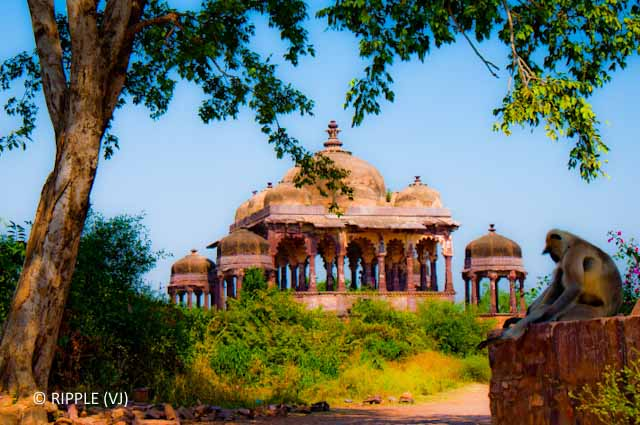Most colorful state of INDIA (Rajasthan) on PHOTO JOURNEY : Posted by VJ SHARMA @ Travelling camera.com : Today I thought of summarizing all the Photo Journeys in Rajasthan(INDIA) till date... I have added links with each photogrpah, so click and check out any of them if you have missed...Structures inside Chittorgarh Fort @ http://phototravelings.blogspot.com/2010/08/structures-inside-chittorgarh-fort.htmlPhoto Journey to City Palace @ Udaipur,Rajasthan @ http://phototravelings.blogspot.com/2010/08/photo-journey-to-city-palace.html A view of the Lake Palace from one of the terraces of the City palace. @ http://phototravelings.blogspot.com/2010/08/photo-journey-to-city-palace.html Rana Kumbha Palace @ Chittorgarh Fort : http://phototravelings.blogspot.com/2010/08/rana-kumbha-palace-chittorgarh-fort.htmlPushkar Heritage Resort @ http://phototravelings.blogspot.com/2010/03/pushkar-heritage-resort.htmlOld Memories in Big Sized Photographs: Sunset @ Pushkar (During World Famous Pushkar Camel Fair 2008 )  : http://phototravelings.blogspot.com/2010/03/old-memories-in-big-sized-photographs.htmlMonsoon Palace @ Udaipur,Rajasthan , INDIA : http://phototravelings.blogspot.com/2010/03/monsoon-palace-udaipur.html .. Roads in Rajasthan, INDIA @ http://phototravelings.blogspot.com/2010/03/roads-in-rajasthan.htmlBridal Competition for Tourists @ Pushkar Camel Fair - 2008 : http://phototravelings.blogspot.com/2010/01/bridal-competetion-for-tourists-pushkar.html.. Siliserh Lake on the way to Sariska Tiger Reserve, Rajasthan... : http://phototravelings.blogspot.com/2010/01/siliserh-lake-on-way-to-sariska-tiger.html.. Thats what I saw at Ranthambore National Park @ http://phototravelings.blogspot.com/2009/12/thats-what-i-saw-at-ranthambore.htmlWelcome-Heritage Resort in Ranthambore : Ranthambore Forest Resort  @ http://phototravelings.blogspot.com/2009/11/welcome-heritage-resort-in-ranthambore.htmlRanthambore Fort in Xtra saturated colors @ Rajasthan, India @ http://phototravelings.blogspot.com/2009/11/ranthambore-fort-in-xtra-saturated.html..Waiting for Pushkar Camel Fair 2009 : October 30th to November 2nd 2009 @ http://phototravelings.blogspot.com/2009/08/waiting-for-pushkar-camel-fair-2009.htmlMain Places to visit in Jaipur, Rajasthan, India @ http://phototravelings.blogspot.com/2009/07/main-places-to-visit-in-jaipur.htmlA weekend @ Surajgarh Fort, Rajasthan, INDIA @ http://phototravelings.blogspot.com/2009/02/weekend-surajgarh-fort.htmlPushkar Night View during Camel Fair 2008 @ http://phototravelings.blogspot.com/2008/11/pushkar-night-view.htmlCamel Fair 2008 @ Pushkar, Rajasthan, INDIA : http://phototravelings.blogspot.com/2008/11/camels-pushkar-camel-fair-2008.html..Padharo Mhare Desh : Rajasthan, INDIA @ http://phototravelings.blogspot.com/2009/01/padharo-mhare-desh-rajasthan-india.html..Sunset @ Pushkar (During World Famous Pushkar Camel Fair 2008 ) @ http://phototravelings.blogspot.com/2008/11/sunset-pushkar-during-world-famous.htmlPanoramic view of Pushkar Camel Fair 2008 @ http://phototravelings.blogspot.com/2008/11/panoramic-view-of-pushkar-camel-fair.htmlJaipur City : Capital of Rajasthan, INDIA @ http://phototravelings.blogspot.com/2008/08/jaipur-city.html Ranthambore Fort @ Rajasthan, India : Ranthambore Fort is an impressive fort and display historical developments of Rajasthan. It is situated near Sawai-Madhopur town in Rajasthan. : Posted by Ripple (VJ) : ripple, Vijay Kumar Sharma, ripple4photography, Frozen Moments, photographs, Photography, ripple (VJ), VJ, Ripple (VJ) Photography, Capture Present for Future, Freeze Present for Future, ripple (VJ) Photographs , VJ Photographs, Ripple (VJ) Photography :