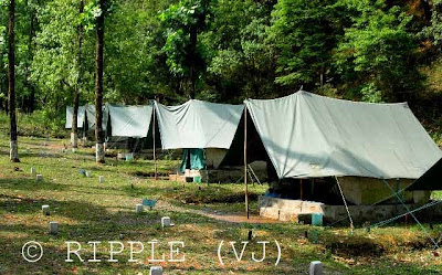 Camping @ SaatTaal, Uttrakhand, INDIA: There are many  places  for camping at SatTaal. There are some groups who manage for your stay, food, trekking, adventurous sports etc... After fours years I don't even remember the name of place where we stayed.: Posted by Ripple (VJ) on PHOTO JOURNEY @ www.travellingcamera.com : ripple, Vijay Kumar Sharma, ripple4photography, Frozen Moments, photographs, Photography, ripple (VJ), VJ, Ripple (VJ) Photography, Capture Present for Future, Freeze Present for Future, ripple (VJ) Photographs , VJ Photographs, Ripple (VJ) Photography : There are multiple sites in SatTaal for Camping. I know only two, one is on the top of a hill which is clearly visible from Lake. Other one inside the jungle by crossing lake.