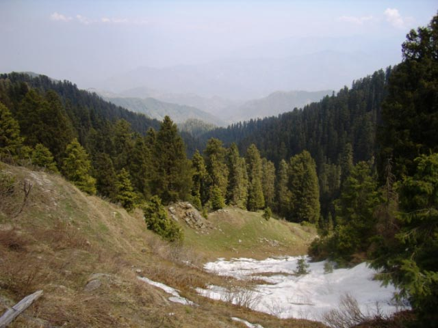 Beautiful Trek towards snow covered peaks of Dainkund from Dalhousie (Casual Clicks without editing) : Posted by VJ Sharma at www.travellingcamera.com : Due to busy schedule these days I am not able to find time to explore places.. Its been two months I am only doing my work :-) So here are few old photographs of a Trek to Dainkund form Dalhousie....Its you have seen my last post about Kala Top Trek, there is a station on main road called Lakkar Mandi from where we change the route towards Kala Top... For Dainkund also, we take right cut from Lakkar Mandi...Dainkund gets maximum snowfall in Dalhousie region...There is a road till the top of this hill, but we chose to trek this distance with some drinks and snacks ... (I don't want to be specific here...)This whole stretch is full of natural richness... Deodars all around and clouds moving here and there to save from hash sunlight on the hills...A view of Khajjiar Lake from Dainkund... Wind on these high hills is chilly and fast.. I completely different experience... We spent some time sitting on these hills and when we moved in calm places(dense deodar forests, there was a continuous beep sound in our ears....We didn't follow this road because it becomes time expensive and a bit boring.... We used to take short-cuts through various forests on the way... Had chance to play with snow balls also :-)Whole stretch is clean, green and full of colorful flowers... I was not very fond of photography during this time and that is the main reason I am not able to portray real image of this place... It was difficult for me to find photographs without people faces :-)Some criss-cross roads on the way... There are few villages around this trek having beautiful mud houses and bunch of sheep spread over various hills...Initially I was not comformtable with the idea of posting this photograph on my blog.. I searched in google and found that many sites already has this information available... I am not sure if its right or wrong but somehow I feel guilty about the act of taking this photograph :-(I know these photographs are not appreciating the real beauty of the place but believe me it was very exciting trek for us... and I these pictures are not giving real view of the place... This place was probably 10 times beautiful than you see here..There is a series of mountains on the trek and finally we reached a temple on the top... Temple was covered with snow, so we were not able to have darshan there...Some random shots in deodar forests....Darkness inside these forests in clear sunny day...Colorful forests make this trek wonderful... A view to Dalhouise on back journey.. Everyone is waiting to have rest for next day Trip to Chamba....