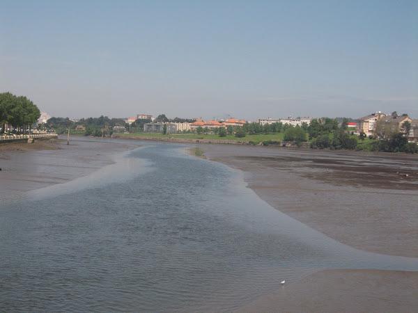 河口海灣海水退潮後