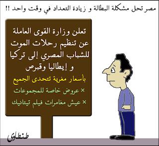 مصر وانفلونزا الطيور بصيغة كاريكاتير 2009 A15