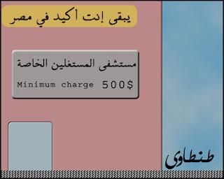 مصر وانفلونزا الطيور بصيغة كاريكاتير 2009 A10