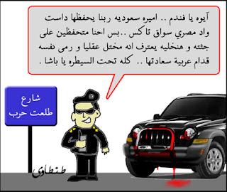 مصر وانفلونزا الطيور بصيغة كاريكاتير 2009 A2