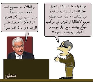 مصر وانفلونزا الطيور بصيغة كاريكاتير 2009 A3