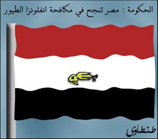 مصر وانفلونزا الطيور بصيغة كاريكاتير 2009 A1